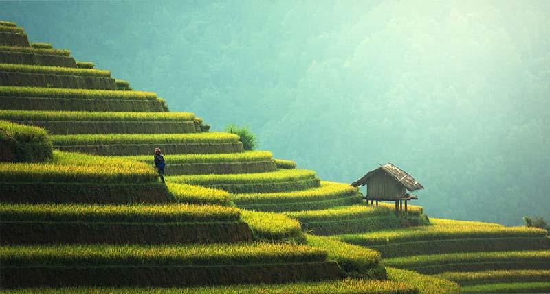 Bali, el paraíso perfecto para desconectarse
