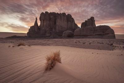 Sáhara argelino